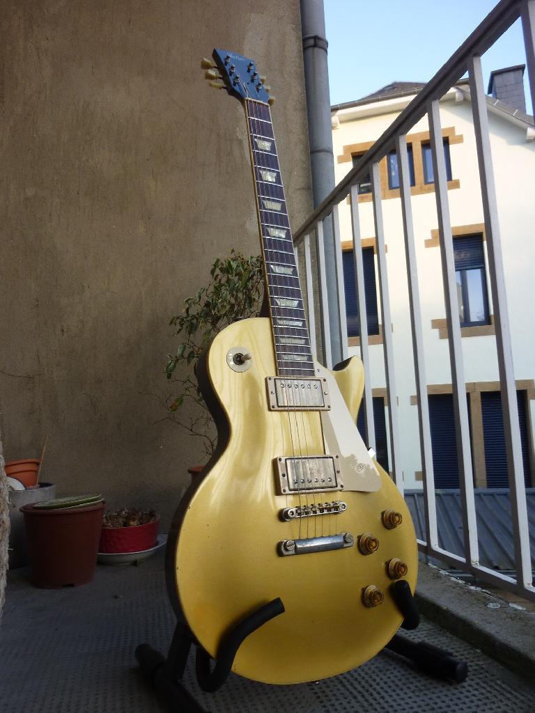 http://www.guitarsmadeinjapan.fr/forums/img/gallery/106697_1389540155.jpg